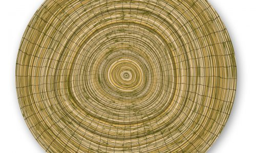 Abstract radial wooden texture
